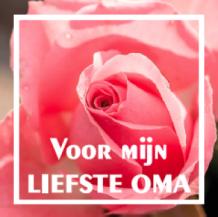 Wonderlijk Voor mijn liefste oma WL 47 nl - Etiketten | Bedrukte etiketten HW-98